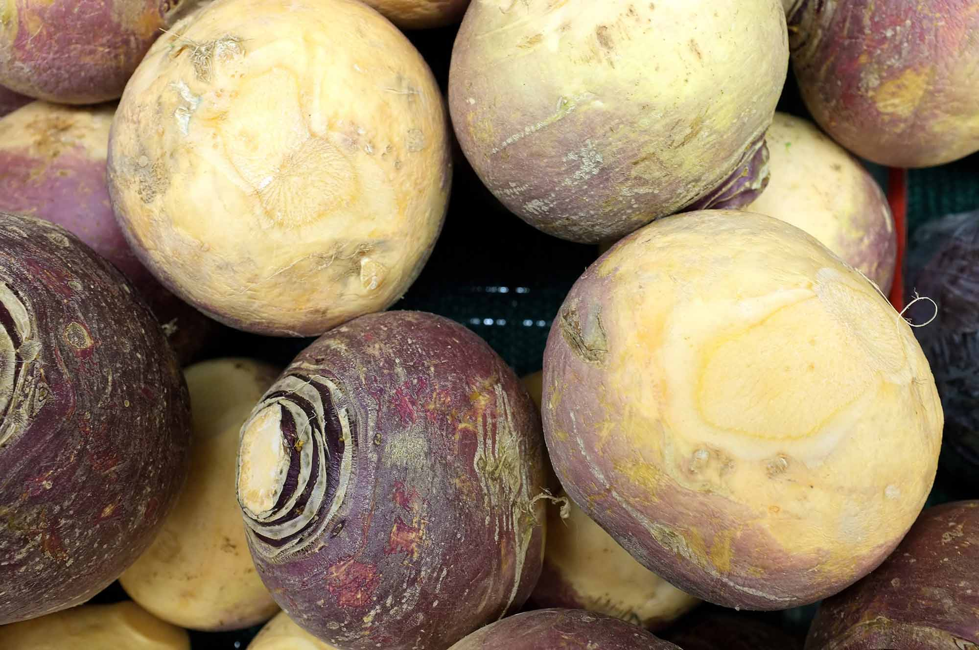 how to say rutabaga in french