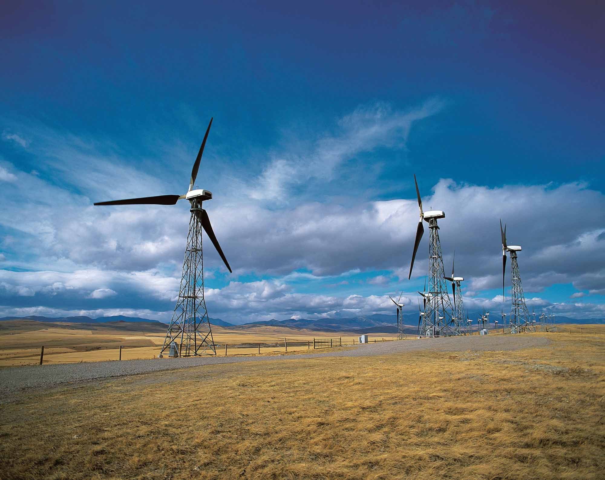 Photo of a wind farm