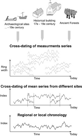 Different types of archaeological dating