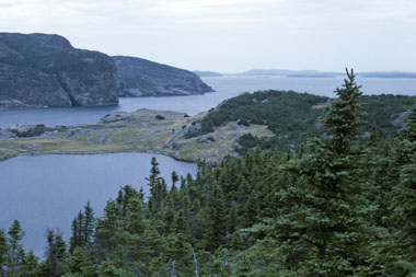 Coast of Terra Nova National Park