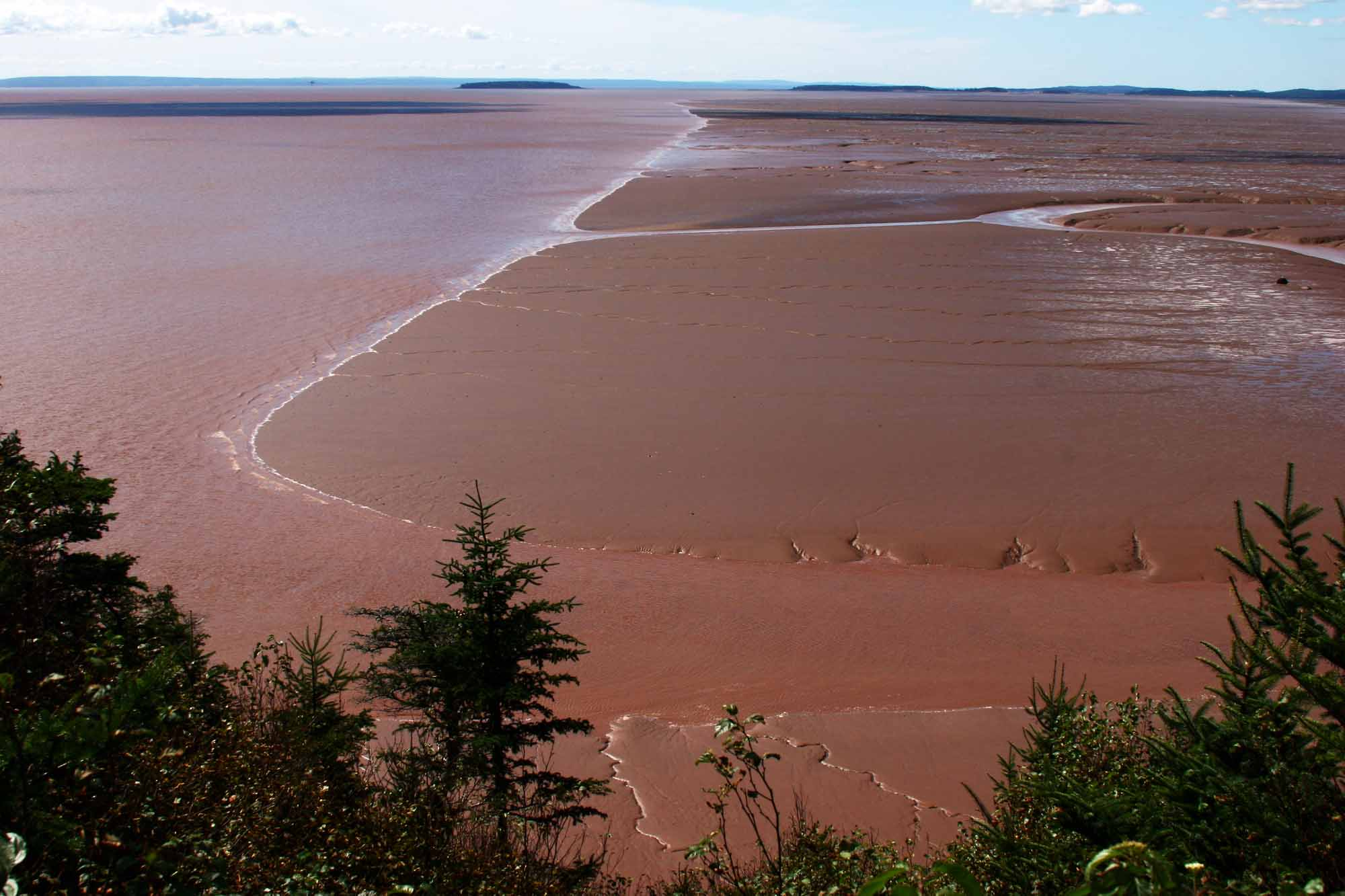 Bay of Fundy and Gulf of Maine