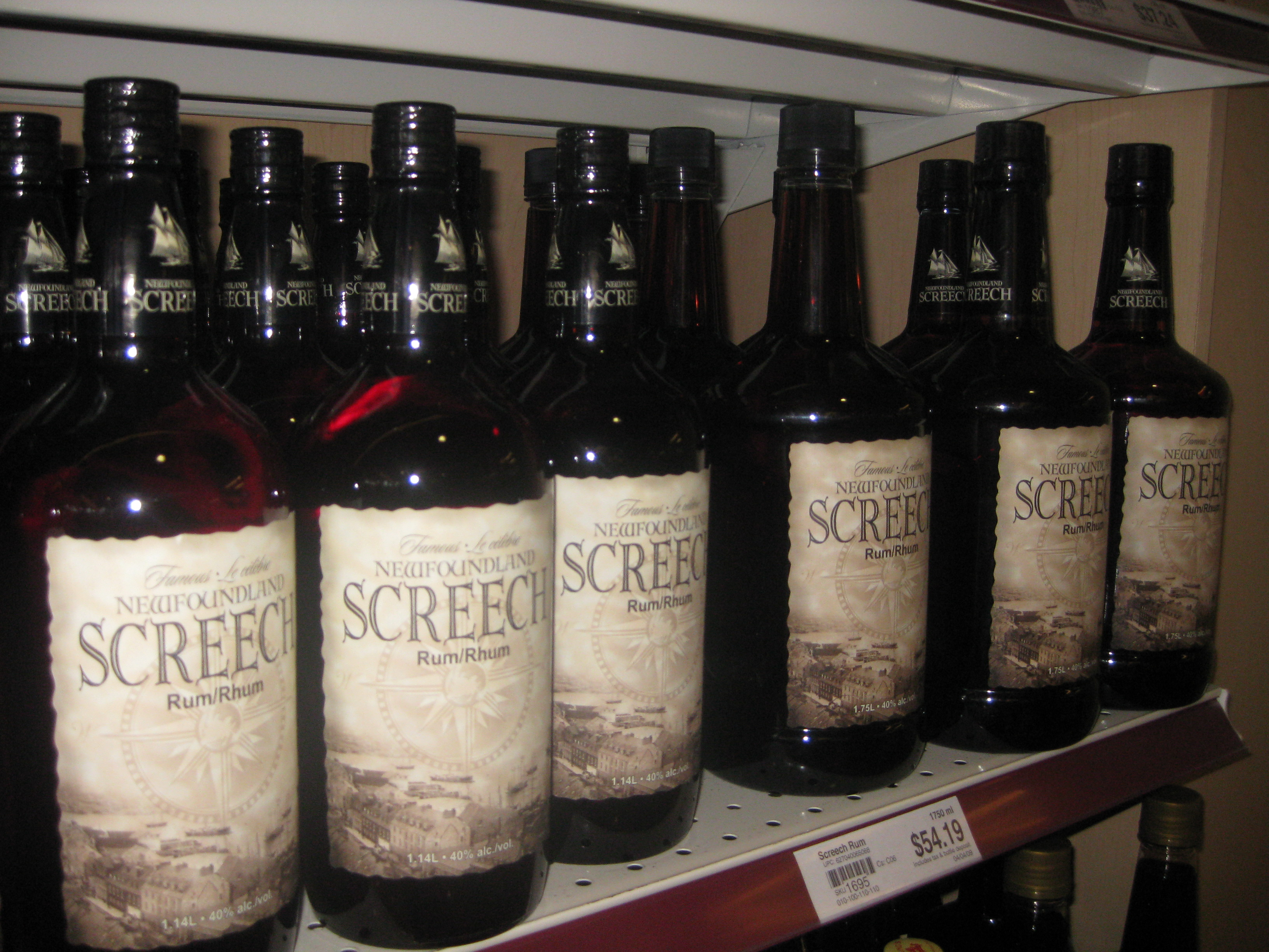 Newfoundland Screech, on shelves (17 August 2009)