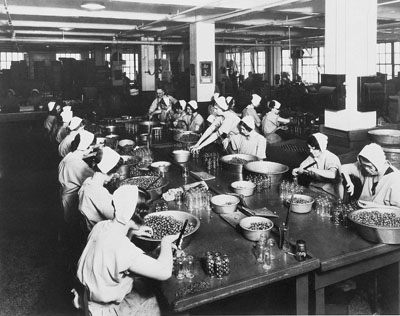 Women in the Labour Force