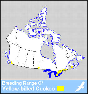 Yellow-billed Cuckoo Distribution