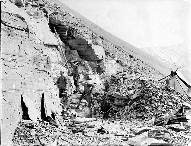 Charles Walcott in the Burgess Shale