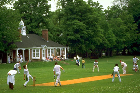 Cricket (Game)