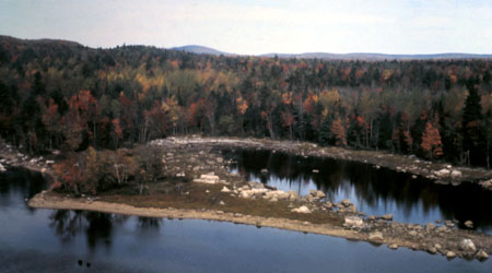 Mud Lake Stream Aerial View
