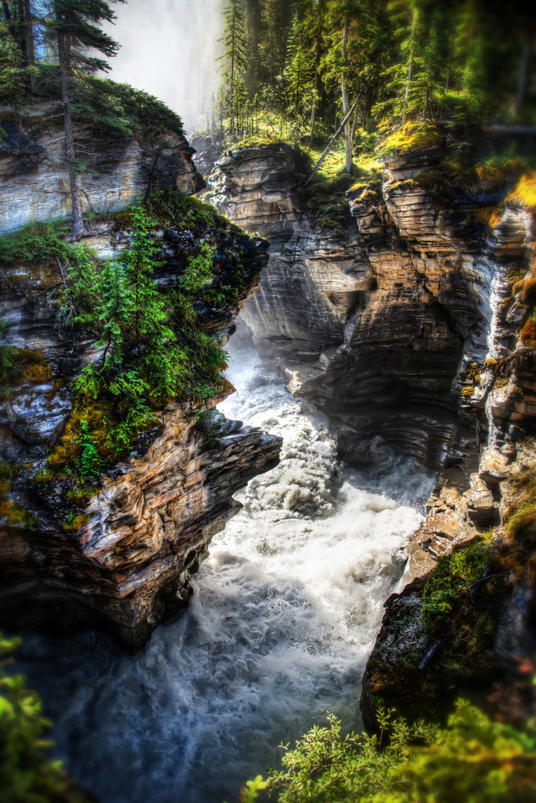 Athabasca Falls in Jasper National Park, 2013.