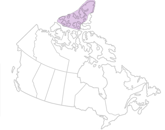 Innuitian Region The Canadian Encyclopedia - The canadian encyclopedia