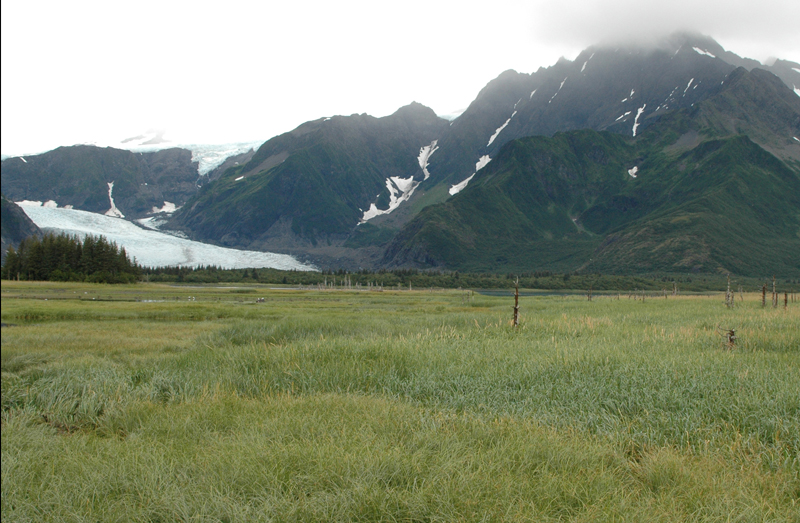 Pedersen Glacier, Alaska (After)