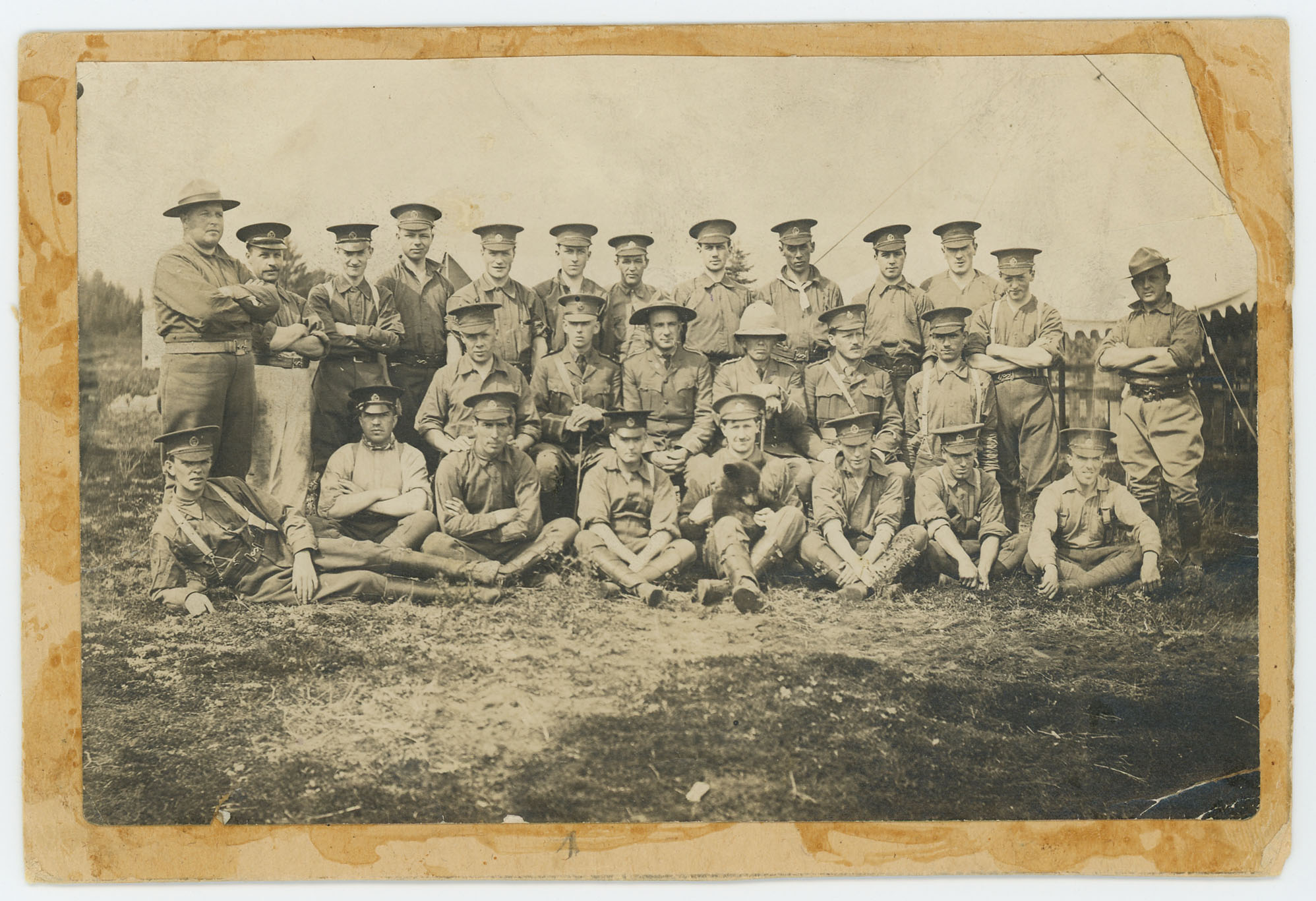 Winnie With the 2nd Canadian Infantry Brigade