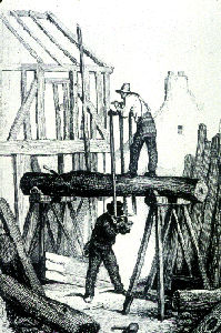 Carpenters Sawing a Log