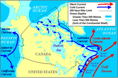 Ocean current the canadian encyclopedia ocean currents map gumiabroncs Images