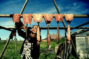 Woman Drying Whitefish