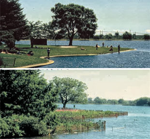 Toronto Feature: Grenadier Pond, High Park (en anglais seulement)