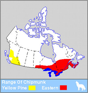 Yellow-pine & Eastern Chipmunk Distribution