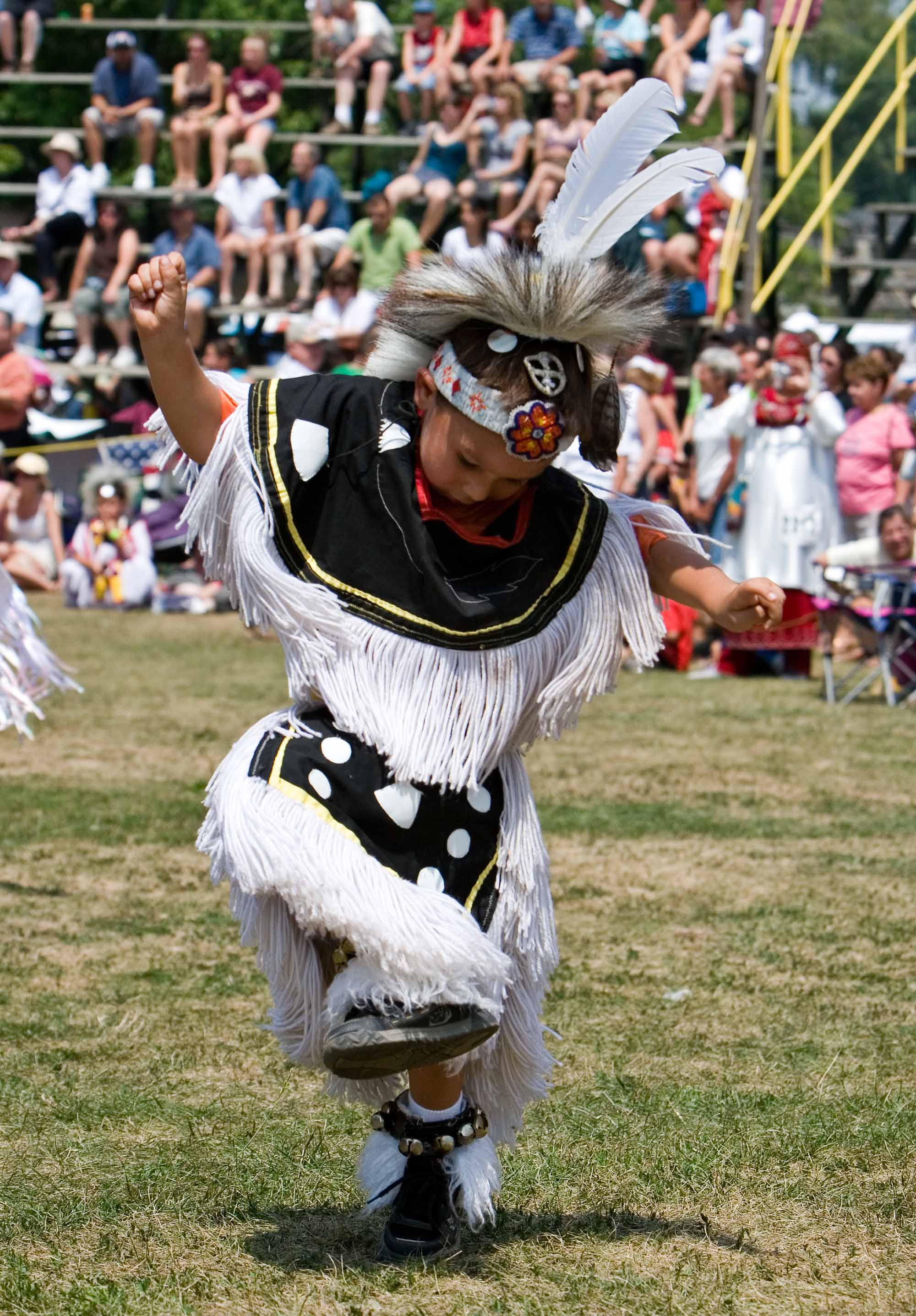 Powwow Grass Dancer