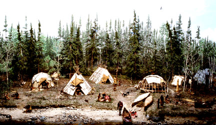 Terminal Woodland lakeside camp