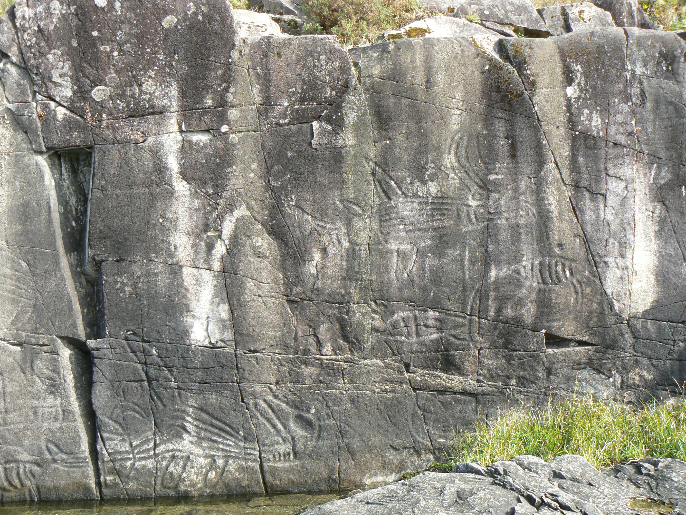 Petroglyphs at Sproat Lake Provincial Park