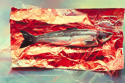 Silver Fish on Crimson Foil, Mary Pratt, 1987, oil on masonite, 18 3/8 x 27 7/8 (courtesy Mira Goddard Gallery).