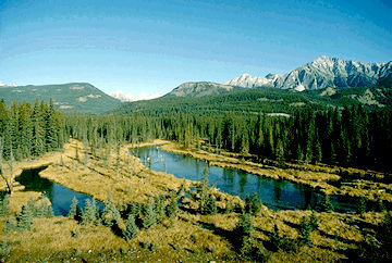 Rocky Mountains, Near Golden