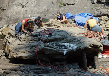British Columbia's Dinosaur Excavations