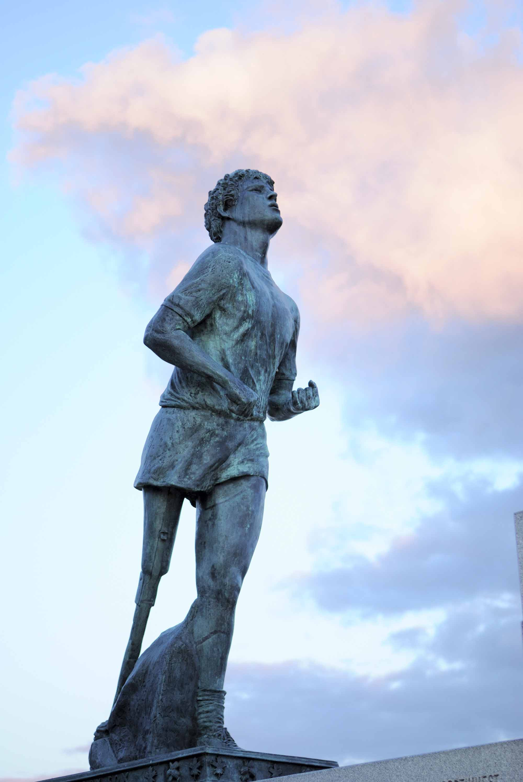terry fox the canadian encyclopedia terry fox