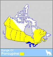 Porcupine Distribution