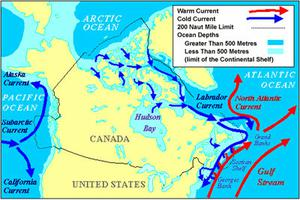 Ocean Currents, Map