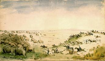 Métis Chasing the Buffalo Herd