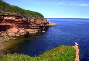 Baie des Haricots