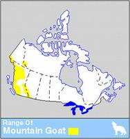 Mountain Goat Distribution