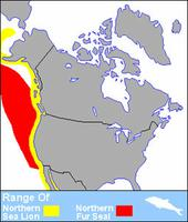 Eared Seals Distribution