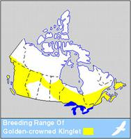 Golden-crowned Kinglet Distribution