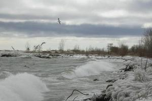 Shoreline in Winter