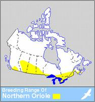 Northern Oriole Distribution