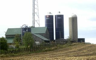 Stave Tower Silos