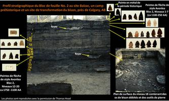 Balzac Site Stratigraphy French