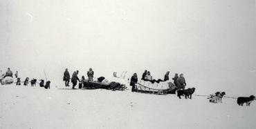 Anderson Expedition