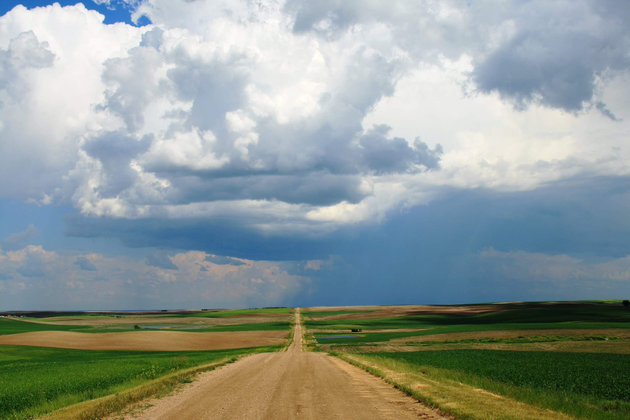 Road through Saskatchewan wheat fields