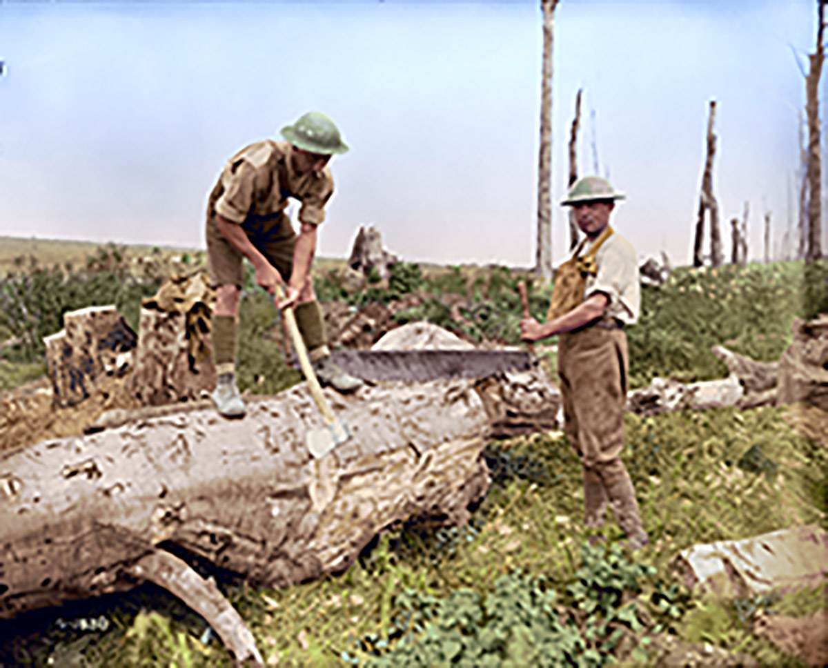 Canadian pioneers at work in a wood near Vimy Ridge. August, 1917.